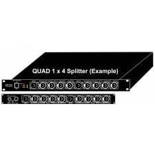 DMX Splitter Quad 1x4 1RU Rack Mount